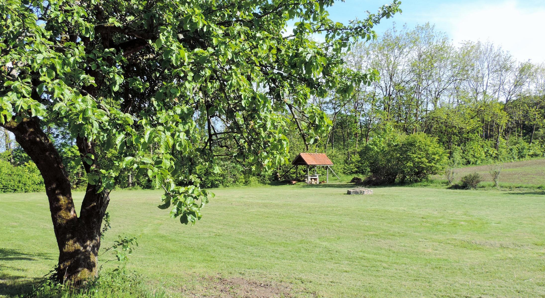 Apfelbaum Haus Ringgau Wiese und Außengelände
